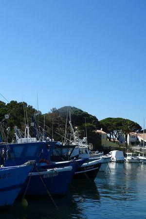 Clear Sky Sea Water Pêcheur 👣🐟 Clear Sky Bateau ❤️ Reflection Sky Pêcheur Mer Peche Port