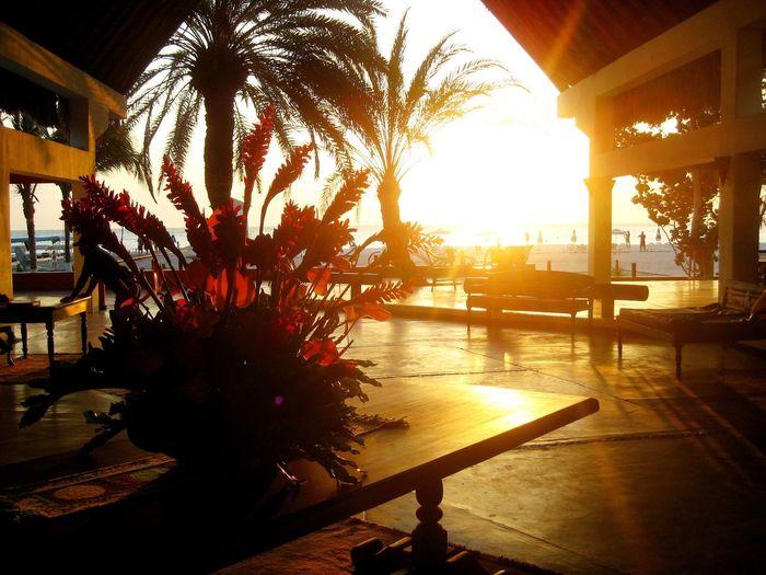 Sunlight Vacations