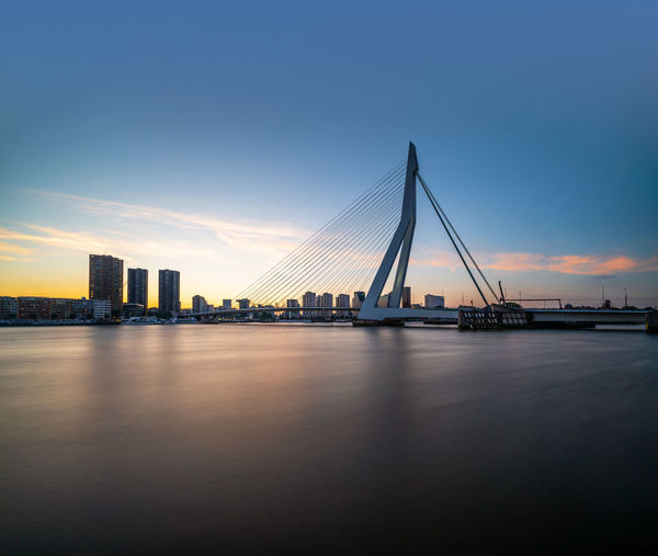 Erasmusbrug Water Architecture Sky Built Structure Transportation Bridge Bridge - Man Made Structure Waterfront City No People River Building Exterior Cable-stayed Bridge