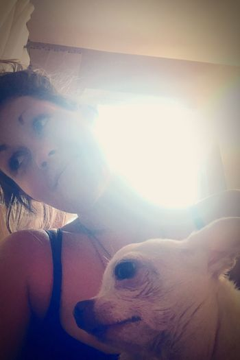 I think the line has definitely been crossed from devoted dog mama to obsessively codependent 😬🤷♀️🐾 #ineedahobby #peebreak #doglover #dogmama Canine One Animal Dog Pets Domestic Lens Flare Domestic Animals