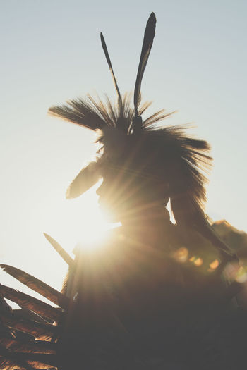 Warrior Sun Nakota, Native American Indian Pow Wow Profile Silhouette Sioux, Backlighting Clear Sky Close-up Day Feather  Feathers, Soft, Contrast, Light, Delicate, Fragile, Light And Dark Head Dress, Indian Warrior Indigenous Culture Indigenous People Low Angle View Outdoors Sun Flare Sun Rays
