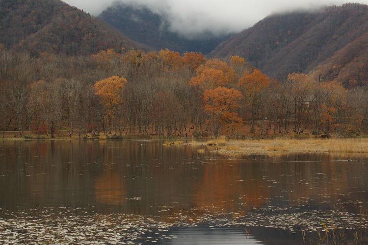 紅葉 山の風景 水辺の風景 秋