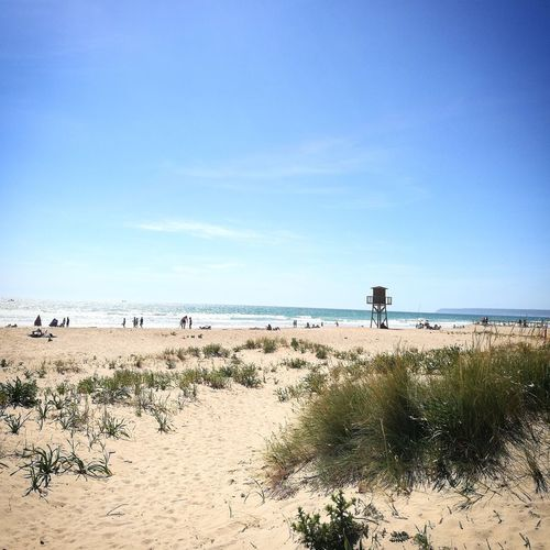 Sand Sand Dune Clear Sky No People Beauty In Nature Spain🇪🇸 Nature Sky Day Zahara De Los Atunes