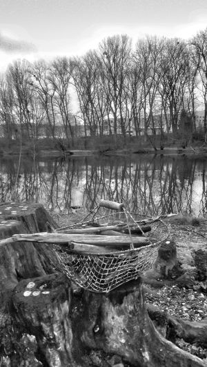 Copyright By LotusBlume69 😉 👍 Streamzoofamily Talking Pictures Beautiful Nature Its Cold Outside Dekoration Mediterran Driftwood Eyem Best Shots - Black + White
