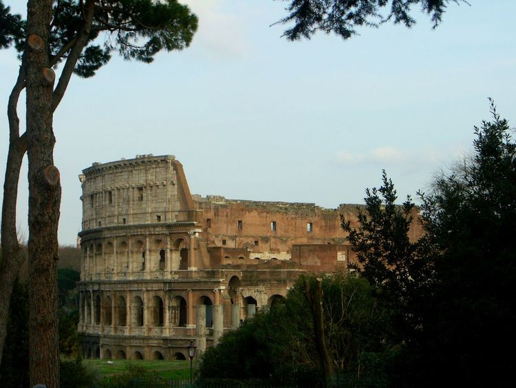 a different view of the colloseum in rome Ancient Civilization Architecture Colloseum Culture History Rome Seing The Sights Tadaa Friends Taking A Trip Travel Destinations Travel Photography