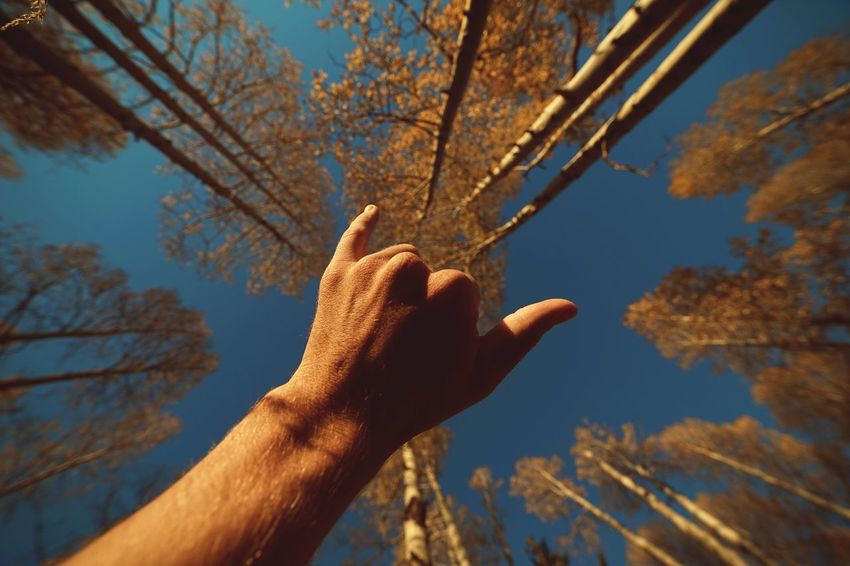 Human Hand Beauty In Nature Shaka Low Angle View Adventure Lifestyles Outdoors Nature EpicShotPhotography