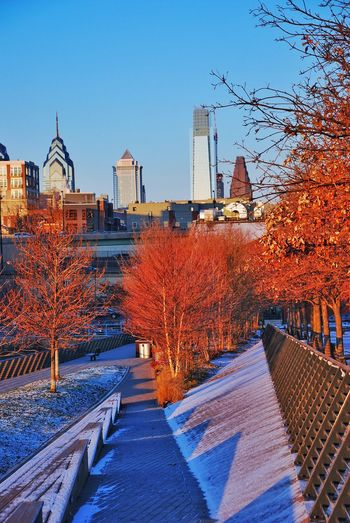Built Structure Tree Architecture Autumn No People Nature Building Exterior City Change Clear Sky Outdoors Bare Tree Cold Temperature Day Beauty In Nature Water Sky RaceStreetPier Benjamin Franklin Bridge  Philadelphia Philly Philadelphia Pennsylvania Nature