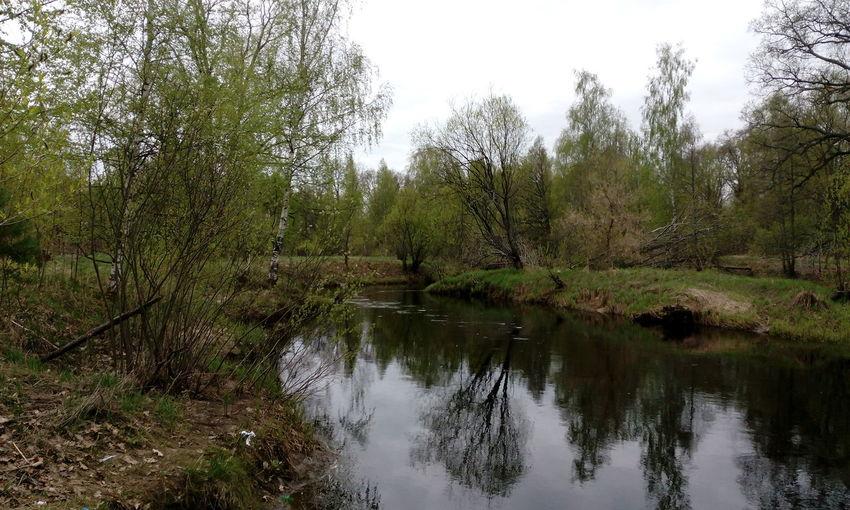 река Нерская речка река Россия весна Visual Feast