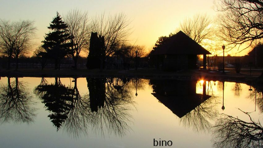 Shooting At Dusk Around The Lake Golden Hour Silhouettes Quiet And Still Feels Like Spring Reflection Perfection  Lake Cadillac Pure Michigan Tree Water Sunset Silhouette Lake Reflection Sky Architecture Built Structure