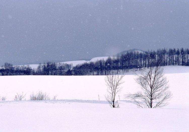 Melancholic Landscapes Traveling Snow at Hokkaido , Japan Ultimate Japan