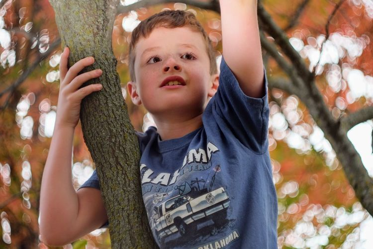 Low angle view of boy against tree