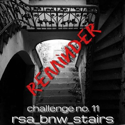 ▪rsa_bnw ▫presents challenge no.11: stairs! ▪▫ pls read the rules carefully ▫everyone's welcome! ▪tag your best stair shots with #rsa_bnw_stairs ▫feel free to use our fam tags in addition: #rsa_bnw and #royalsnappingartists ▪old and new pics are allowed Daybestpict_bw Black_white Black And White Rsa_bnw Bw_lover Blackandwhiteonly Bws_worldwide Ig_snapshot Bw_love Bestshooter Bnw_society Blackandwhitephoto Bw_lovers Eclectic_bnw Irox_bw Bnw_demand Insta_bw Award_gallery Insta_pick_bw Bnw_captures Ic_bw The_bestbw Royalsnappingartists Rsa_bnw_stairs Most_deserving_bw Bw_shotz Igworldclub