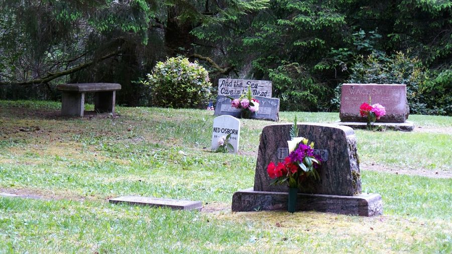 Oysterville Cemetery Oysterville Washington State Washington Historic Pieces Of History Interesting Places Just Passing Through