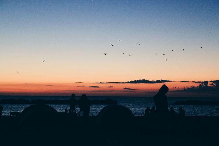 Sunrise Alba