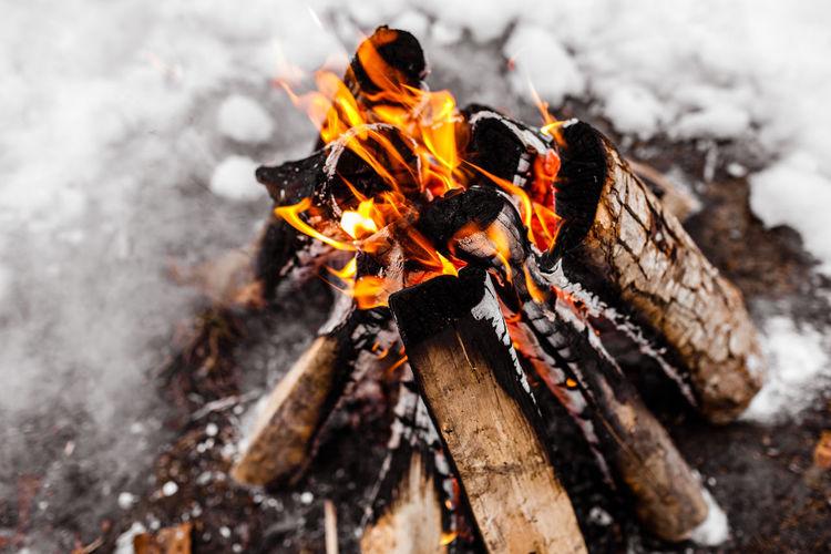 Close-up of bonfire on log