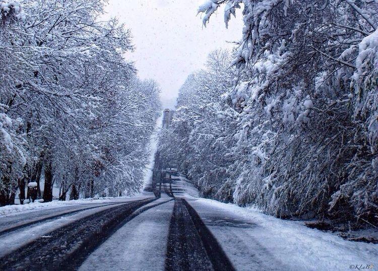 Black And White Chosen Paths