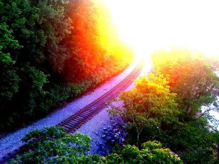 EyeEm Best Shots - Long Exposure Sunset Nature_collection