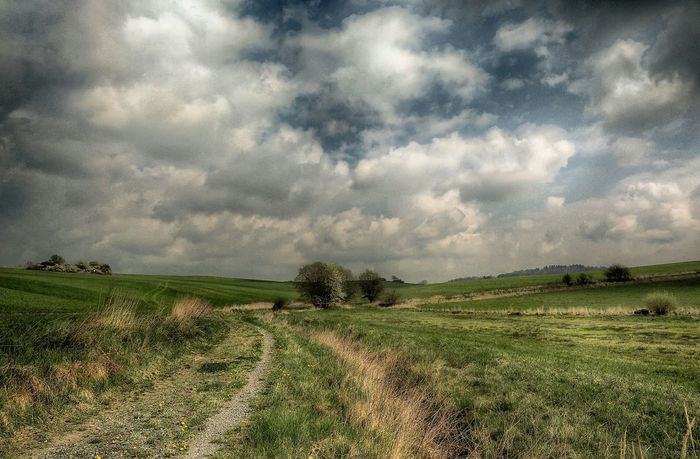 Krajina před deštěm Springtime Nature OM-D Olympus OM-D EM-1 Nature_collection Relaxing Sky And Clouds Landscape EyeEm Best Shots - Landscape