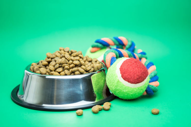 Dry food with toy for animal on green background. Food And Drink Food Studio Shot Still Life Indoors  Colored Background No People Close-up Freshness Large Group Of Objects Blue Green Background Table Green Color Focus On Foreground Copy Space Healthy Eating Wellbeing Cut Out Container Temptation Turquoise Colored Blue Background Domestic Animals Pet Shop