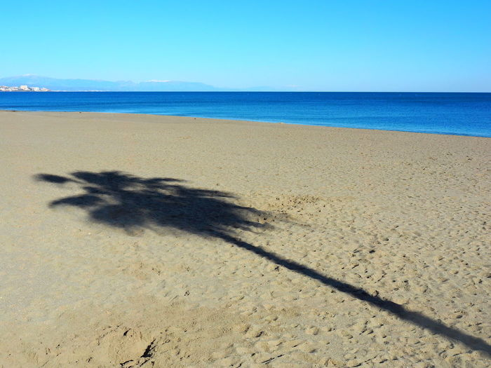 Sea Beach Sand Land Water Scenics - Nature Nature Sky Horizon Over Water Horizon Tranquil Scene Tranquility Sunlight Beauty In Nature Shadow Day Clear Sky No People Blue Outdoors Focus On Shadow Palm Tree FUENGIROLA  SPAIN