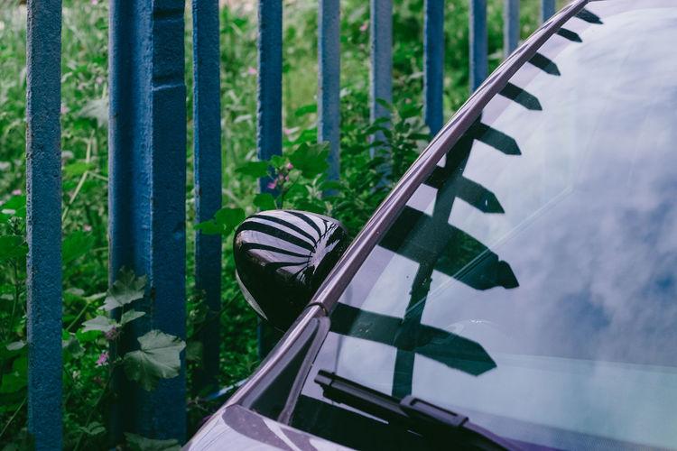 Car By Fence
