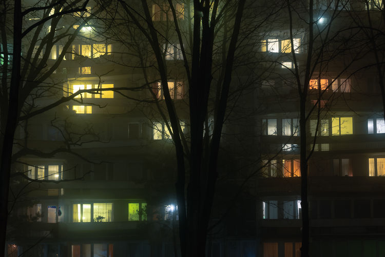 Fog, Lights and the City #1 Bare Tree Big City Life Block Of Flats City City Lights Colors Of The Night Eastern Europe Evening At Home Fog Foggy Night Illuminated Life In The Walls Moody Neighborhood Night No People Tree