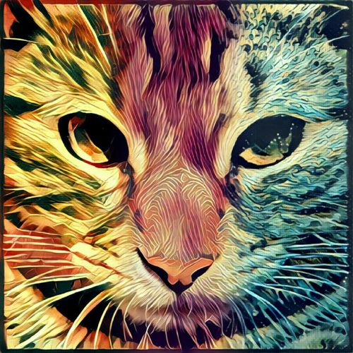 Prisma_Filter Prisma Effect Prisma Art Gucio Cat♡ Cat Lovers Cats 🐱 Catoftheday Art Cat