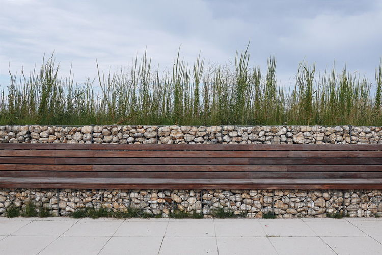 The viewing deck. NorthNorfolk Nwt Visitor Center Clean Lines Minimalism Bench Seating Bench Outdoor Seating Planting Garden Architectural Feature