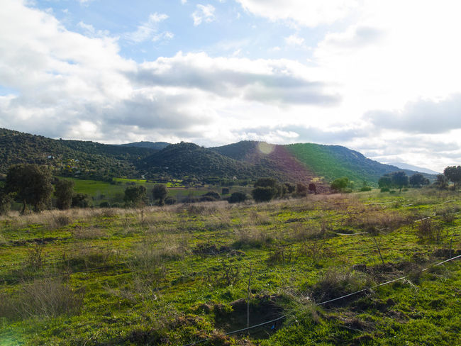Beauty In Nature Cloud - Sky Cloudy Countryside Day Dehesa Environment Grass Grassland Holm Oak Landscape Landscape_Collection Mountain Nature No People Outdoors Pasture Pasture, Paddock, Grassland, Pastureland Quercus Quercus Ilex Rural Rural Scene Scenery Sky