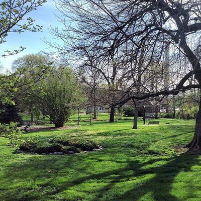 Peacepark Outdoors Mizzou ColumbiaMo CoMO