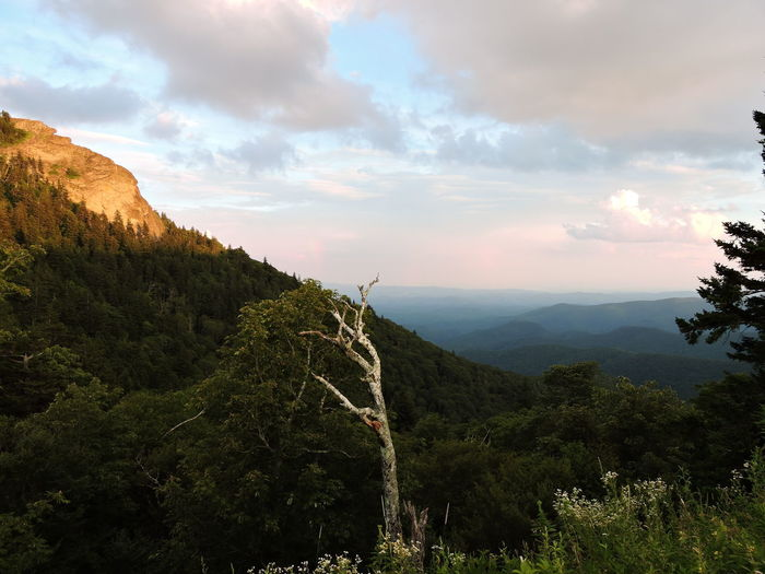 Beauty In Nature Blue Ridge Parkway Cloud Cloud - Sky Cloudy Devils Courthouse Geology Idyllic Landscape Majestic Nature No People Non Urban Scene Non-urban Scene Outdoors Physical Geography Plant Remote Rock - Object Rock Formation Scenics Sky Tranquil Scene Tranquility Tree