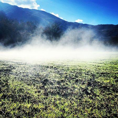 Silent Hill Scarpeinfangate Fango nebbia èquasiinverno