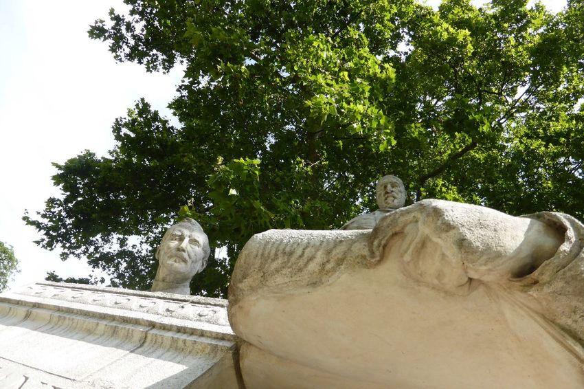 Ooops!!! The Weeping Angels Statue sSculptureArt Arbre Creativité Jour Exterieur Ciel Point Sur Le Premier Plan Vert Nature Gros Plan