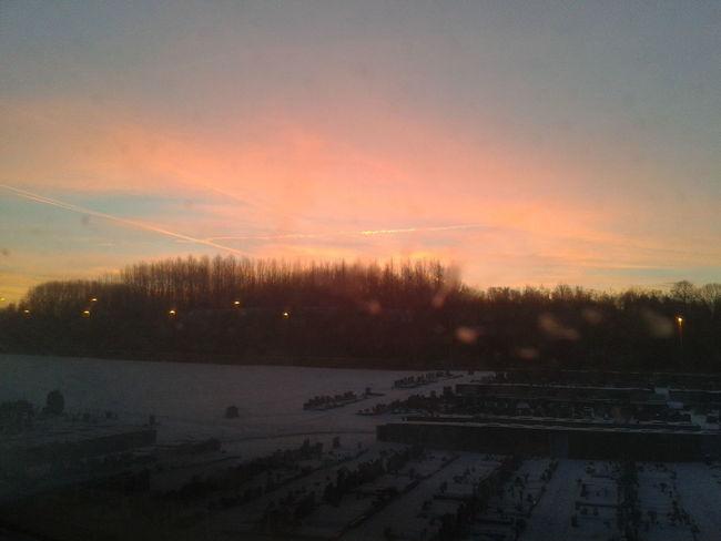 City Daybreak Embrace Nature No People Outdoors Rising Sun Sunrise_Collection Sunrise_sunsets_aroundworld Tranquility Tree