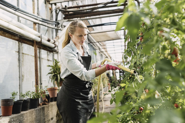 Woman standing in greenhouse