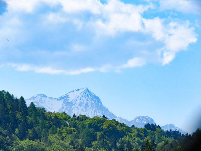 Panorama of the Alps with forest in front Betterlandscapes Alps Alps Austria Blue Sky Snowcapped Mountain Forest Trees Background Landscape Clouds Clouds And Sky Tree Mountain Forest Sky Cloud - Sky Mountain Range The Great Outdoors - 2018 EyeEm Awards