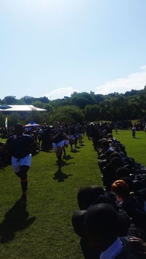 Rugby Sports Schoolboyrugby Graeme College Eastern Cape