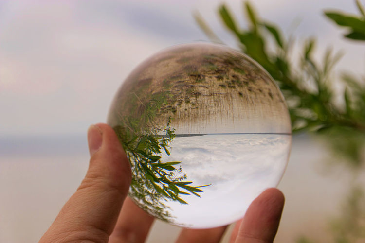 Cropped image of person holding crystal ball
