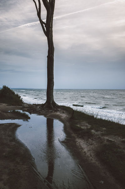 Beach Beauty In Nature Day Deutschland Gespensterwald Horizon Over Water Landscape Nature Nienhagen No People Ostsee Outdoors Scenics Sea Sky Tranquil Scene Tranquility Tree Water