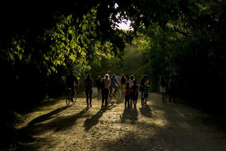 Group of people walking on road in park