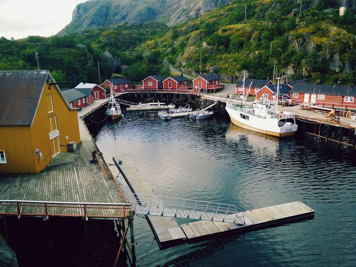 Nusfjord Whale Trail Tour Norway North Harbour Nusfjord Travel Photography