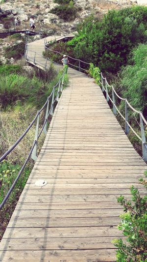 EyeEmNewHere The Way Forward Growth Outdoors Nature Day Footbridge Tranquility Beauty In Nature Grass Water Tree Plant No People Future Vision Clear Sky Nature Rock Face Beauty In Nature Physical Geography The Week On EyeEm Built Structure EyeEm Nature Lover Horizon Over Water BabyFuture