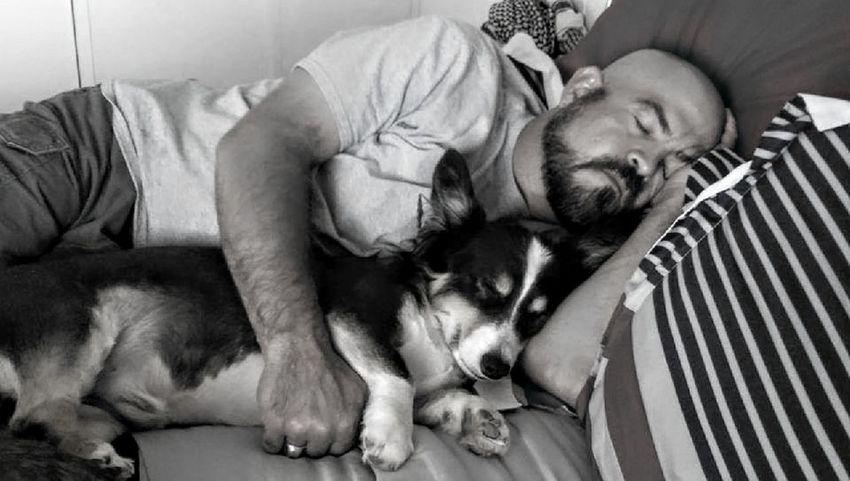 Beard Dog Pets One Man Only Men One Animal One Person People Lying Down Domestic Animals Indoors  Lifestyles Portrait Friendship Nap Sleeping Cuddle Buddies Corgi Best Friends