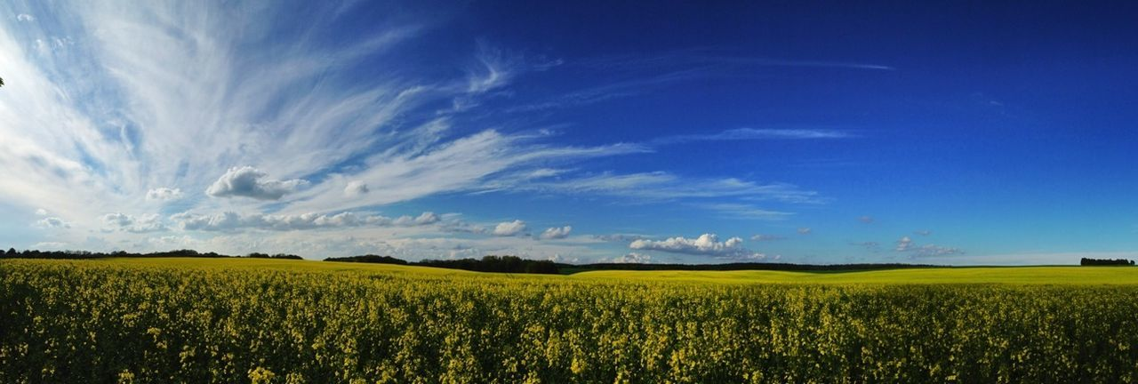 Felb Panorama Raps WeatherPro: Your Perfect Weather Shot