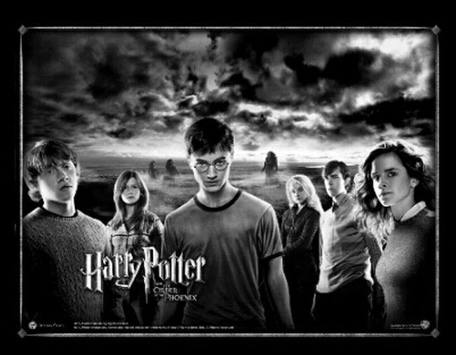Voila le challenge!!! J'ai eu du mal à trouver ce que je pouvais proposer, peut-être à cause de la chaleur loool... Harry Potter car j'aime ce monde magique, fou et qu'on aimerait qu'il soit vrai parfois!! ;))) Donc bon courage à toutes et à tous et Go Bnw_friday_challenge Voici Les Règles:   Le Thème Est Imposé. Vous êtes Libre Pour L'interprétation Mais La Photo Doit être De Vous !!! Une Seule Contrainte Le Noir & Blanc.   -MERCREDI-  Le Thème Est Donné Par Le Gagnant De La Semaine Précédente. Il Poste Une Invitation/post Hi! Here Are The Rules For The Famous Bnw_friday_challenge !   A New Theme Will Be Issued On Wednesday And Reposted By The Winner Of The Previous Challenge On Thursday.  Everyone  Is Welcome Unless They Tag Their Own Pics  ( No Stolen Images, No Repost, N
