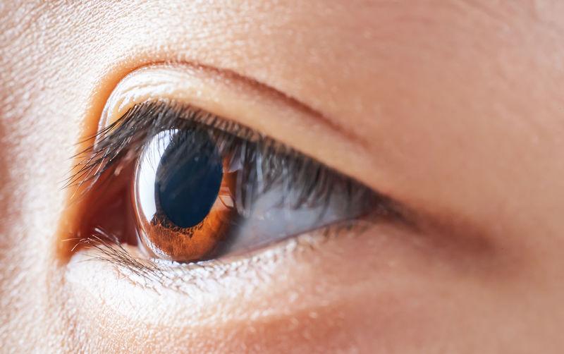Close-up of girl eye