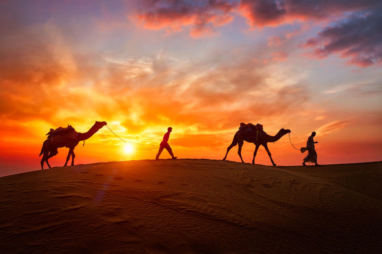 Silhouette men with camels walking at desert against orange sky