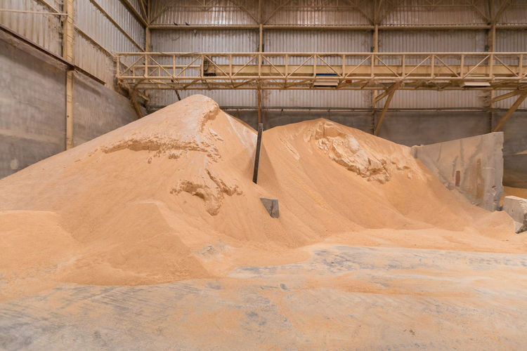 Pile of wheat bran, raw material storage, storage of raw materials. animal feed industry
