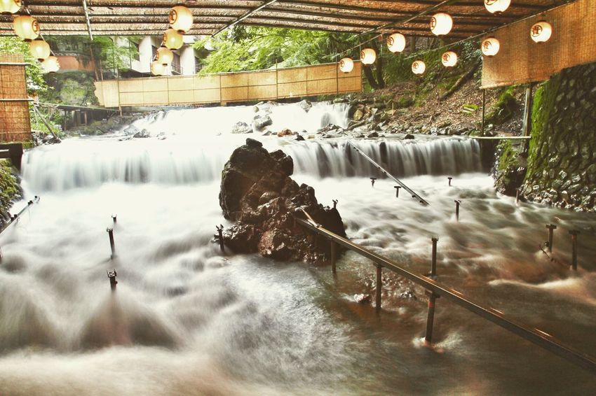 Long exposure from Japan - A cafe with water through it Water Plant Lake Nature Built Structure Architecture Reflection Animal Wildlife Animals In The Wild Day Beauty In Nature Tree No People Outdoors Animal Park Animal Themes Illuminated