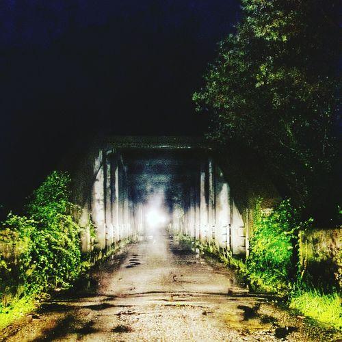Bridge Creepy Creepy Atmoshpere Ghosts